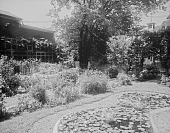 view [Miscellaneous Sites in Salem, Massachusetts]: the garden at 10 Chestnut Street. digital asset: [Miscellaneous Sites in Salem, Massachusetts] [glass negative]: the garden at 10 Chestnut Street.