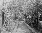 view [Miscellaneous Sites in Salem, Massachusetts]: the garden at 80 Federal Street, also known as the Peirce-Nichols House, looking toward the house. digital asset: [Miscellaneous Sites in Salem, Massachusetts] [glass negative]: the garden at 80 Federal Street, also known as the Peirce-Nichols House, looking toward the house.