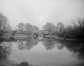 view [The Riverway]: looking across water to a bridge. digital asset: [The Riverway] [glass negative]: looking across water to a bridge.