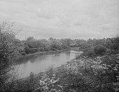 view [The Riverway]: looking across water toward houses in the background. digital asset: [The Riverway] [glass negative]: looking across water toward houses in the background.