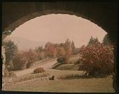 view Thompson Garden: roads, trees, and houses as seen from under an overpass. digital asset: Thompson Garden: roads, trees, and houses as seen from under an overpass.: [1928?]