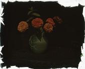 view Thompson Garden: an arrangement of marigolds in a ceramic vase. digital asset: Thompson Garden: an arrangement of marigolds in a ceramic vase.: [1928?]