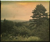 view Thompson Garden: on a hill overlooking woodlands and mountains. digital asset: Thompson Garden: on a hill overlooking woodlands and mountains.: [1928?]