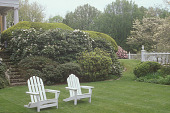 view [Apple Trees]: shrub border near house and flowering dogwood trees; two Adirondack chairs. digital asset: [Apple Trees]: shrub border near house and flowering dogwood trees; two Adirondack chairs.: 2005 May.