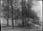 view [Unidentified Garden in Massachusetts, No. 1]: stone retaining wall and terrace digital asset: [Unidentified Garden in Massachusetts, No. 1]: retaining walls and terrace.: [between 1920 and 1939]