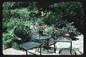 view [Boardman Garden]: garden furniture. digital asset: [Boardman Garden]: garden furniture.: 1987 Aug.