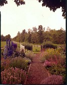 view [Tredinnock]: rose garden near house with perennials beyond. digital asset: [Tredinnock] [film transparency]: rose garden near house with perennials beyond.