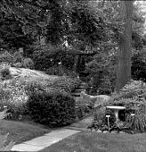 view [Sheldon Garden]: garden path leading to Torii gate/arbor. digital asset: [Sheldon Garden] [safety film negative]: garden path leading to Torii gate/arbor.