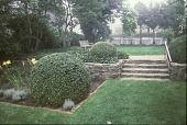 view [Hadwen House-Satler Memorial]: steps leading from center to upper lawn. digital asset: [Hadwen House-Satler Memorial]: steps leading from center to upper lawn.: 2002 Aug.