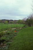 view [Ship Oak Farm]: perennial border along wire fence ; fields behind fence. digital asset: [Ship Oak Farm]: perennial border along wire fence ; fields behind fence.: 2004 Apr.