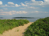 view [Sea Meadow]: banks of Rugosa roses form an entrance to the beach. digital asset: [Sea Meadow]: banks of Rugosa roses form an entrance to the beach.: 2011 Jul.