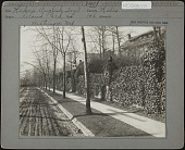 view [Roland Park]: English ivy-covered wall along a street in an unidentified location. digital asset: [Roland Park] [photographic print]: English ivy-covered wall along a street in an unidentified location.