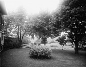 view [Edgewood (MD)]: lawn, trees, and shrubs, with the house barely visible on the left. digital asset: [Edgewood (MD)] [glass negative]: lawn, trees, and shrubs, with the house barely visible on the left.