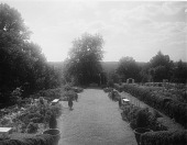 view [Windy Gates]: one of the formal gardens after Sears redesign and planting of cedars by Lewis & Valentine Company. digital asset: [Windy Gates] [glass negative]: one of the formal gardens after Sears redesign and planting of cedars by Lewis & Valentine Company.