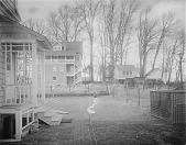 view [Ogilby Garden]: looking toward adjacent properties. digital asset: [Ogilby Garden] [glass negative]: looking toward adjacent properties.