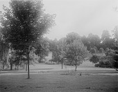 view [Maryland State Normal School (Towson University)]: part of what would become the campus, before construction. digital asset: [Maryland State Normal School (Towson University)] [glass negative]: part of what would become the campus, before construction.