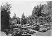 view [Symington Garden]: one side of the sunken garden. digital asset: [Symington Garden] [glass negative]: one side of the sunken garden.