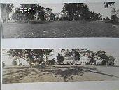 view [Chrysler Garden] digital asset: [Chrysler Garden] [slide]