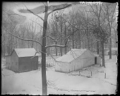 view [White Garden]: stables in the woods. digital asset: [White Garden] [glass negative]: stables in the woods.