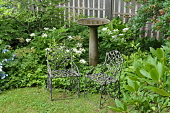 view [Aldersea]: the Soderholtz birdbath, prized because it withstands Maine winters, and two twig style chairs. digital asset: [Aldersea]: the Soderholtz birdbath, prized because it withstands Maine winters, and two twig style chairs.: 2013 Aug.