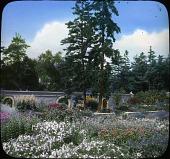 view [Abby Aldrich Rockefeller Garden]: main flower garden. digital asset: [Abby Aldrich Rockefeller Garden]: main flower garden.: [between 1914 and 1949?]