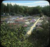 view [Abby Aldrich Rockefeller Garden]: flower beds with paths. digital asset: [Abby Aldrich Rockefeller Garden]: flower beds with paths.: [between 1914 and 1949?]
