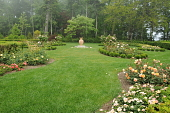 view [Kenarden]: In the formal rose garden boxwood-edged beds surround a large urn. digital asset: [Kenarden]: In the formal rose garden boxwood-edged beds surround a large urn.: 2010 Jul.