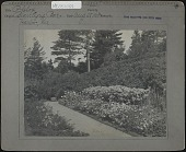 view [Blair Eyrie]: flower bed. digital asset: [Blair Eyrie] [photoprint]: flower bed.