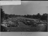 view Fair Lane: [formal rose garden] digital asset: Fair Lane [photonegative]