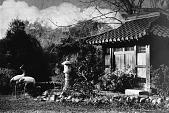 view [Middlegate Japanese Gardens]: Shower house. digital asset: [Middlegate Japanese Gardens]: Shower house.: ca. 1935 Mar.