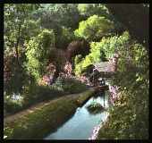 view Parque Nacional Eduardo Ruiz: a view into the lovely natural gardens in the park. digital asset: Parque Nacional Eduardo Ruiz: a view into the lovely natural gardens in the park.: 1937 Jan.