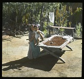 view [Miscellaneous Sites in Mexico]: a woman or girl holding a baby in an unidentified location, alongwide what may be a trough of coffee beans. digital asset: [Miscellaneous Sites in Mexico]: a woman or girl holding a baby in an unidentified location, alongwide what may be a trough of coffee beans.: 1937 Jan.