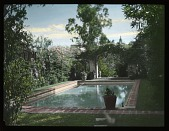 view [Miscellaneous Sites in Mexico]: a swimming pool in an unidentified location, possibly one of the private homes visited during the Garden Club of America's tour. digital asset: [Miscellaneous Sites in Mexico]: a swimming pool in an unidentified location, possibly one of the private homes visited during the Garden Club of America's tour.: 1937 Jan.