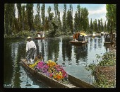 view Floating Gardens of Xochimilco: flower filled flatboats on a canal. digital asset: Floating Gardens of Xochimilco: flower filled flatboats on a canal.: 1937 Jan.