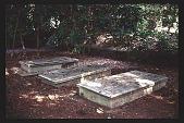 view [Cheeononda]: cemetaries. digital asset: [Cheeononda]: cemetaries.: 1997