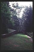 view [Cheeononda]: woodlands. digital asset: [Cheeononda]: woodlands.: 1997