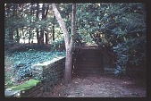 view [Cheeononda]: patios. digital asset: [Cheeononda]: patios.: 1997
