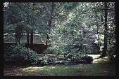 view [Cheeononda]: gardening in the shade. digital asset: [Cheeononda]: gardening in the shade.: 1997