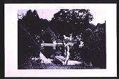 view [Cheeononda]: woman in the garden. digital asset: [Cheeononda]: woman in the garden.: 1925.