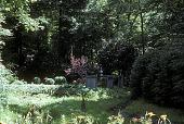 view [Neese Garden]: Japanese gardens. digital asset: [Neese Garden]: Japanese gardens.: 1998 Aug.