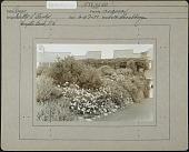 view Barker Garden digital asset: Barker Garden [photoprint]