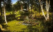view [Bingham Garden] digital asset: [Bingham Garden]: 1933.