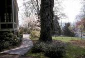 view [Burrows Garden]: new walk and landscaping. digital asset: [Burrows Garden]: new walk and landscaping.: circa 1962.