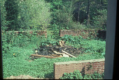 view [Elmore Garden]: site before landscaping. digital asset: [Elmore Garden]: site before landscaping.: 1967 May.