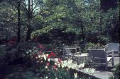 view [McGraw Garden]: terrace several years after landscaping. digital asset: [McGraw Garden]: terrace several years after landscaping.: 1968 May.