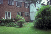 view [Cox Garden]: back of house before landscaping. digital asset: [Cox Garden]: back of house before landscaping.: 1980.