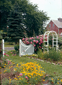 view [Pitney Farm]: arch trellis, picket fence, and front garden. digital asset: [Pitney Farm] [slide]: arch trellis, picket fence, and front garden.