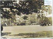 view [Hammond Garden] digital asset: [Hammond Garden] [slide]