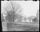 view [Princeton University]: west campus at Princeton, with Blair Arch and Blair Hall dormitory in the background. digital asset: [Princeton University] [glass negative]: west campus at Princeton, with Blair Arch and Blair Hall dormitory in the background.