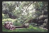 view [Watts Garden]: approach to steps. digital asset: [Watts Garden]: approach to steps.: 1997 May.